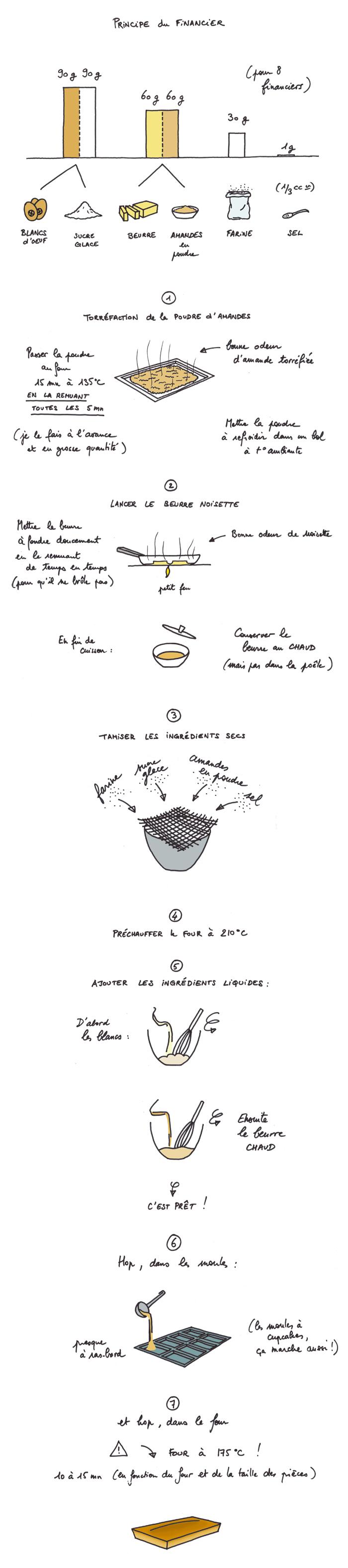 Financier_dessin_700b